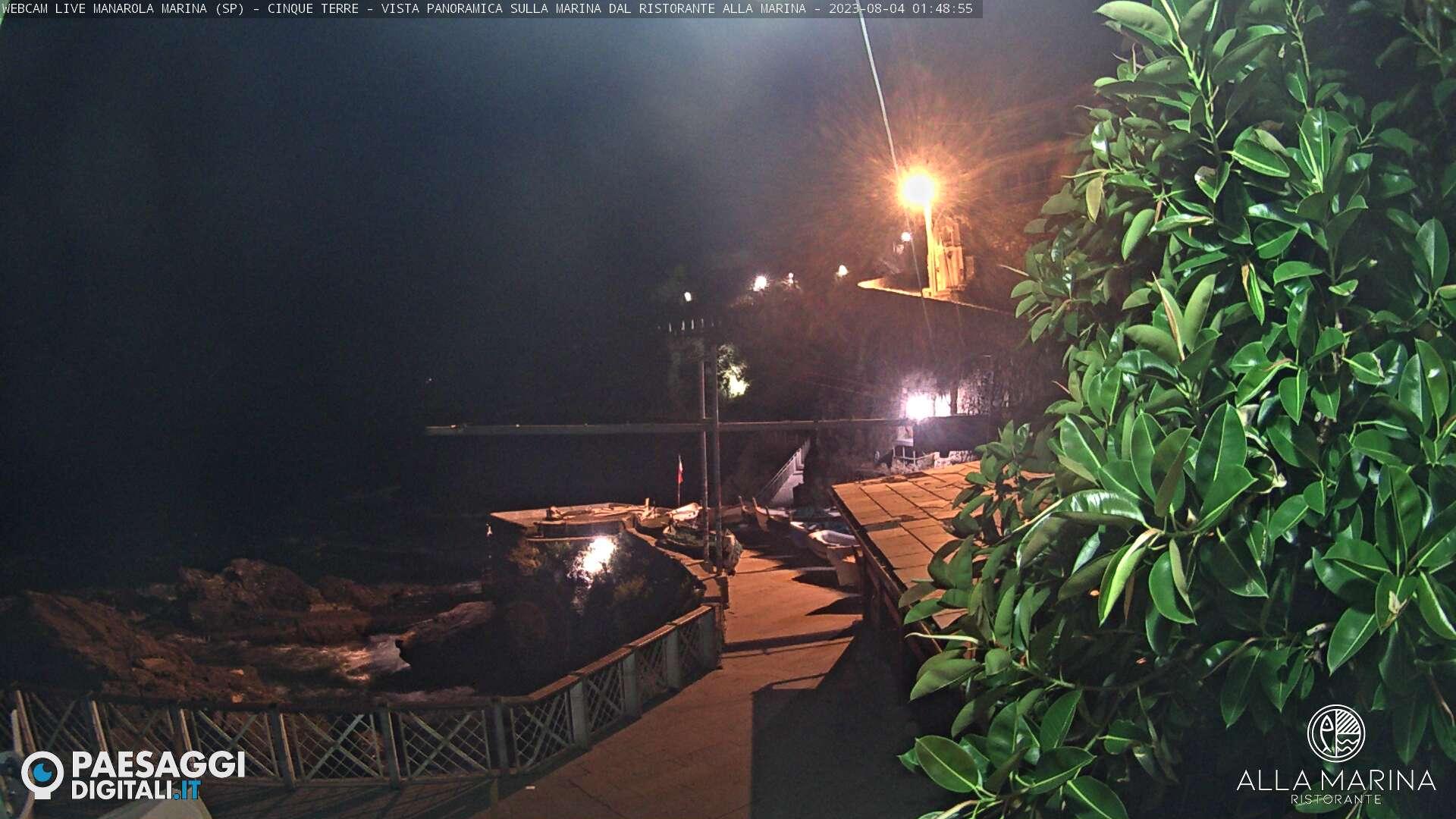 Webcam à Manarola nelle Cinque Terre